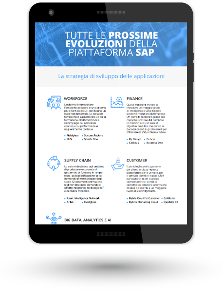 MOCKUP_WIIT_SAP-4