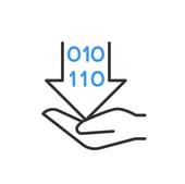 icon data masking